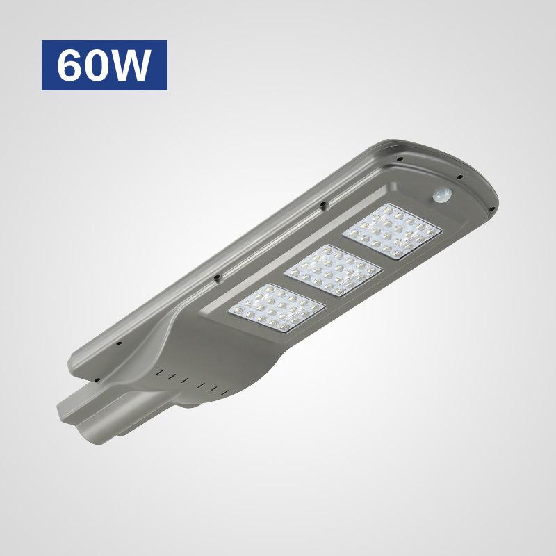 Đèn LED chiếu sáng ngoài trời cảm ứng hồng ngoại thân nhiệt hiện đại HSLD60