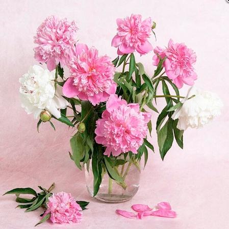 Tranh đính đá mẫu hoa XING7789